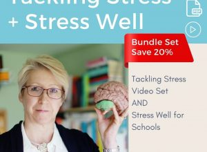 Final Tackling Stress and Stress Well Bundle
